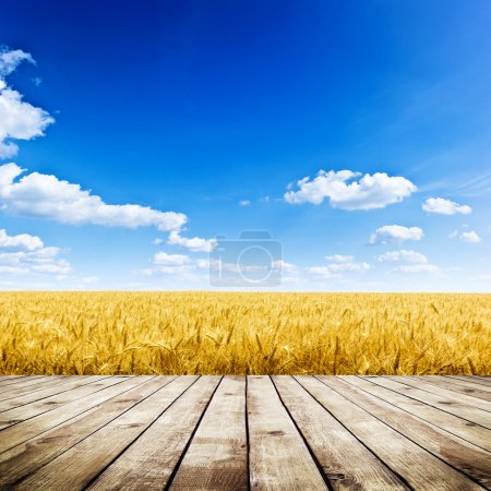 Photo for Wood floor over yellow wheat field under nice sunset cloud sky background - Royalty Free Image