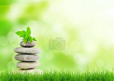Photo pour Herbe verte avec des pierres, fond naturel avec un accent sélectif. concept de spa - image libre de droit