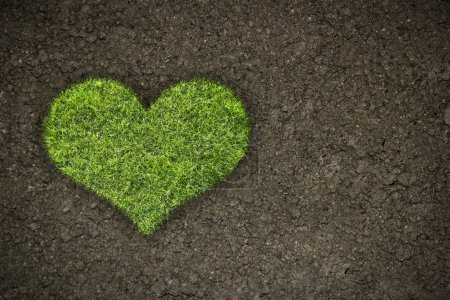 Photo for Heart shape from green grass in soil background - Royalty Free Image