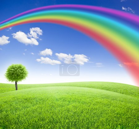 Photo for Green field and tree under blue sky with sun and rainbow - Royalty Free Image
