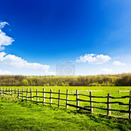 Photo for Fence in the grrn field under blue cloud sky. Beautiful landscape - Royalty Free Image