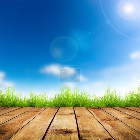 Photo for Fresh spring green grass with blue bokeh and sunlight and wood floor. Natural background - Royalty Free Image