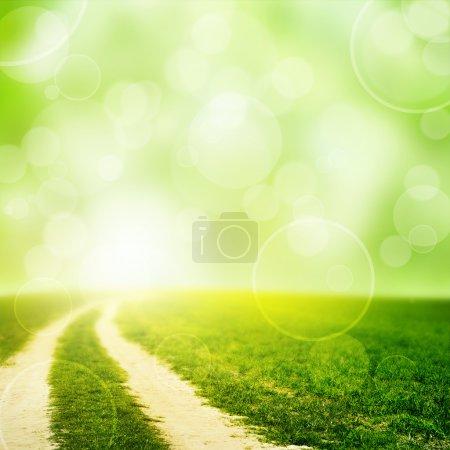 Photo pour Champ vert sous le ciel couchant. Beauté nature arrière-plan - image libre de droit