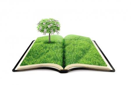 Photo pour Livre de la nature avec arbre d'argent isolé sur blanc - image libre de droit