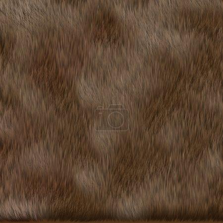 brown dog fur texture