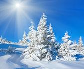 Morning winter mountain sunshine landscape