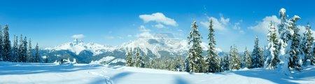 Photo pour Hiver montagne sapin forêt enneigée panorama et femme touristique (haut de papageno bahn - filzmoos, Autriche) - image libre de droit