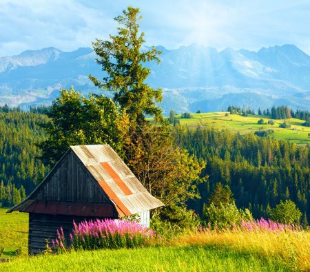 Photo for Sunshine above summer mountain village outskirts with pink flowers and wooden shed in front and Tatra range behind (Gliczarow Gorny, Poland) - Royalty Free Image