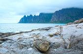 Summer Senja coast (Jagged Ersfjord, Norway, polar )