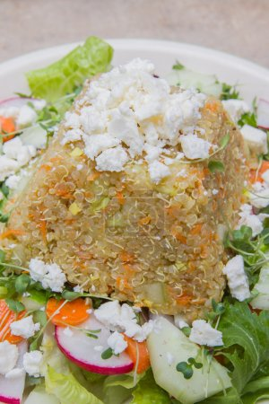 Photo for Delicious vegetarian meal with fresh sprouted organic quinoa over a salad with goat cheese - Royalty Free Image