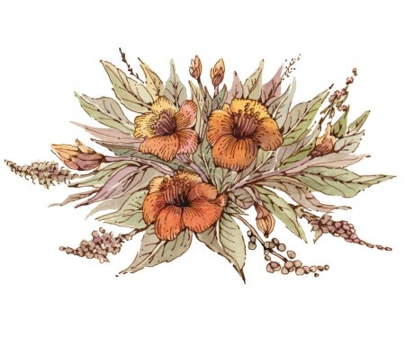 Flowers illustration.