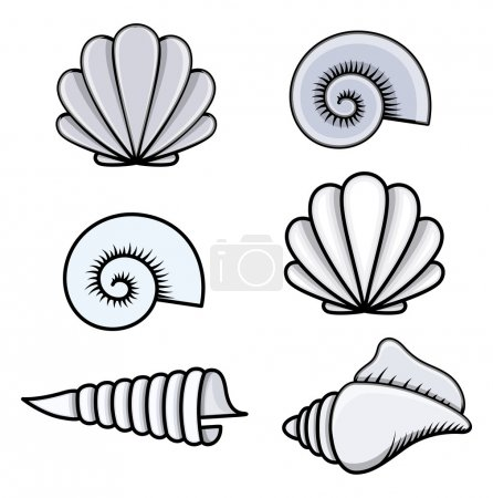 Seashells - Cartoon Vector Illustration