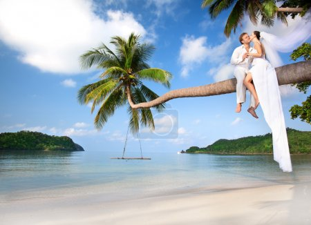 Photo for Beautiful couple on the beach in wedding dress on palm tree - Royalty Free Image