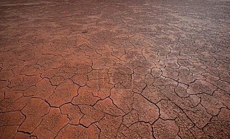 terra dry