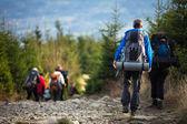 Lidé turistika - goiing krásné alpské cesty