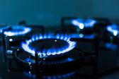 Plameny plynový sporák
