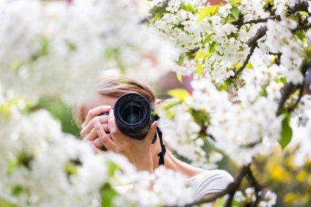 Photo pour Jolie photographe en plein air par une belle journée de printemps, prenant des photos d'un arbre en fleurs - image libre de droit