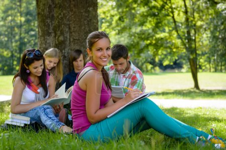 Students studying on meadow in park teens