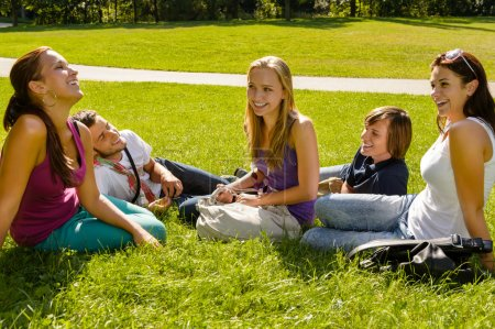 Teens sitting on lawn in park talking