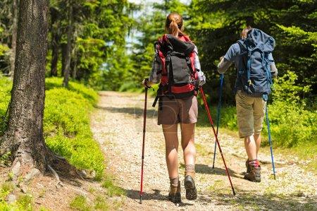 Photo pour Sportives randonneurs sur le chemin d'accès avec des bâtons de randonnée - image libre de droit