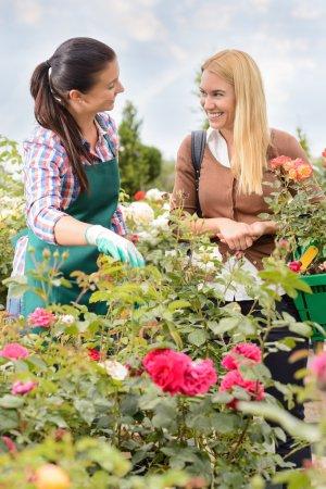 Photo pour Deux femmes parlent de plantes roses dans le jardin en souriant - image libre de droit