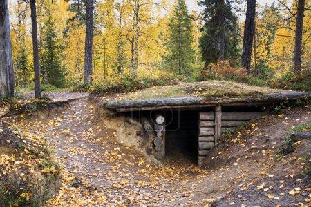 Waldbäume und versteckt in ihrem Obdach
