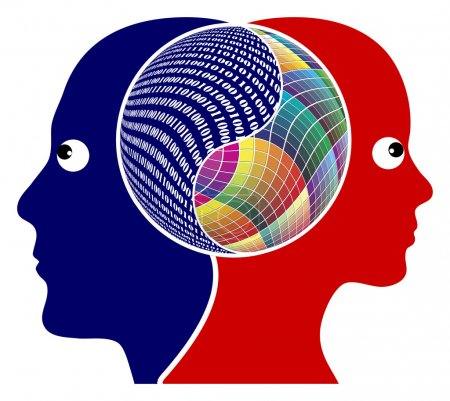 Photo pour Il cervello destro e cervello sinistro ha una funzione diversa, pensiero logico o creativo - image libre de droit