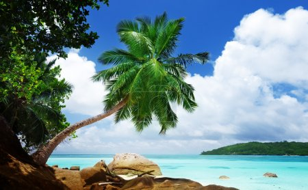 beach on Mahe island in Seychelles