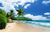 Pláž na ostrově mahe, Seychely