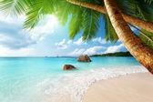 """Постер, картина, фотообои """"пляж Лацио anse на острове Праслина в Сейшельских островах"""""""