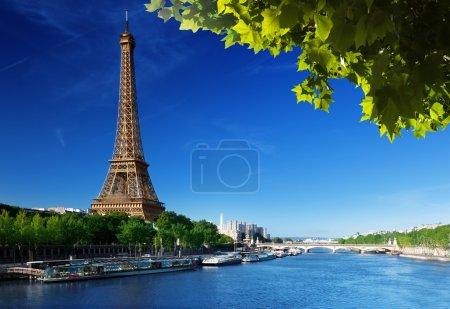 Photo pour Tour Eiffel, paris. France - image libre de droit
