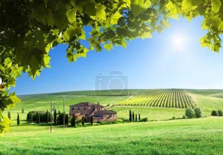 paysage de la Toscane avec corps de ferme typique