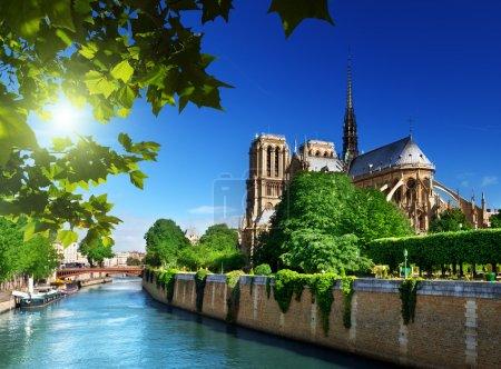Photo pour Notre-Dame paris, france - image libre de droit