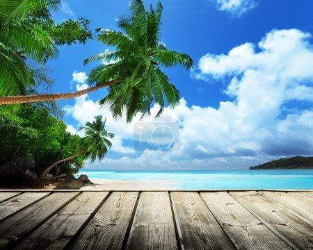 Beach of Seychelles