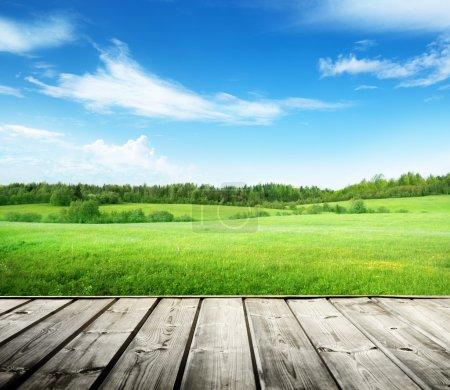 Foto de Campo de hierba y cielo perfecto - Imagen libre de derechos