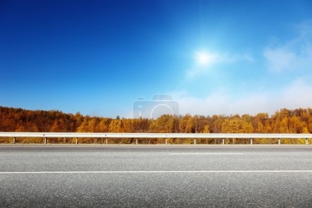 Photo for Road in autumn forest - Royalty Free Image