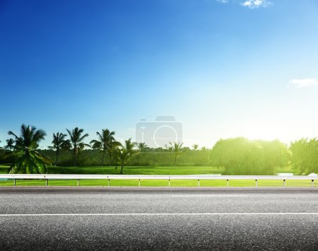 Photo for Asphalt road and tropical forest - Royalty Free Image