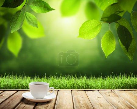 Photo pour Tasse café et arbres ensoleillés fond - image libre de droit