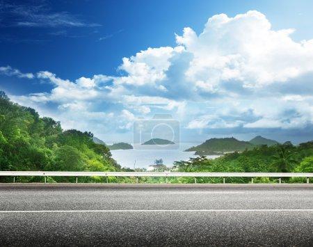 asphalt road and tropical forest