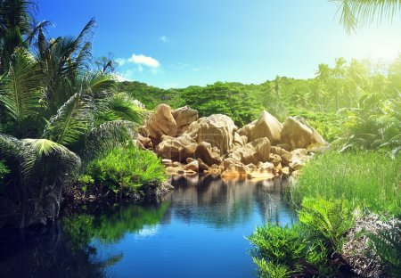 lake in jungle of Seychelles, La Digue island