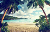 """Постер, картина, фотообои """"Закат на пляже, остров Маэ, Сейшельские острова"""""""