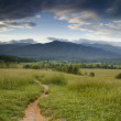 A trail lead to the mountains in the Cades Cove ar...