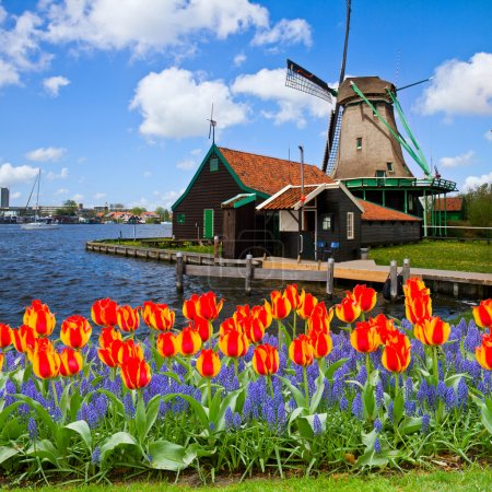 Dutch windmill of Zaanse Schans