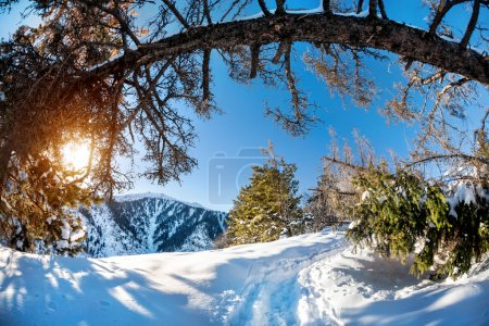 Winter mountain scenery at blue sky with sun...