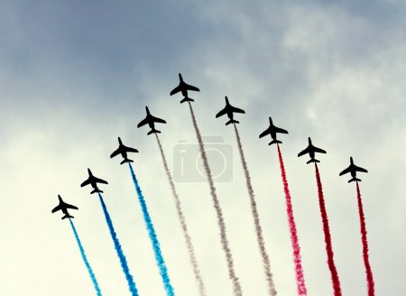 PARIS - JULY 14: French Patrouille de France at a military parad
