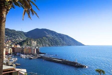 Little port of Camogli
