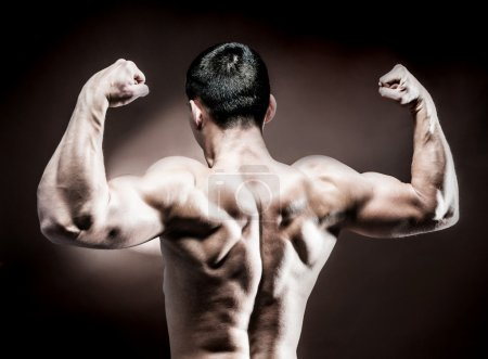 Photo for Muscular male back on dark background - Royalty Free Image