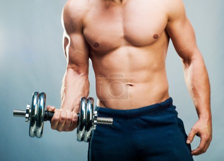 Photo for Attractive athletic male torso with dumbbells - Royalty Free Image