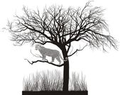 Vector illustration of a leopard lurking in a tree