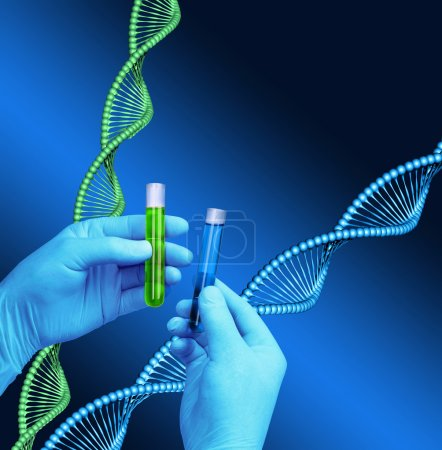 Photo for Chemist hands holding test tubes, DNA helix model background - Royalty Free Image